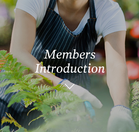 Members Introduction